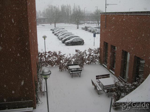 Snefald, et af de første