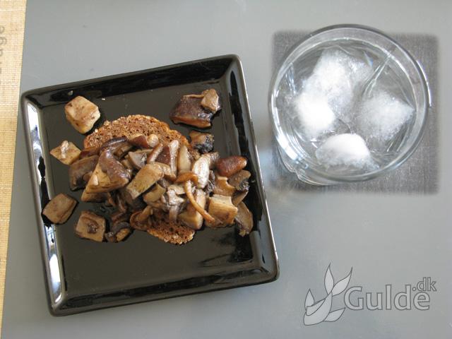 What I ate - Vilde svampe og kyllinge-mix