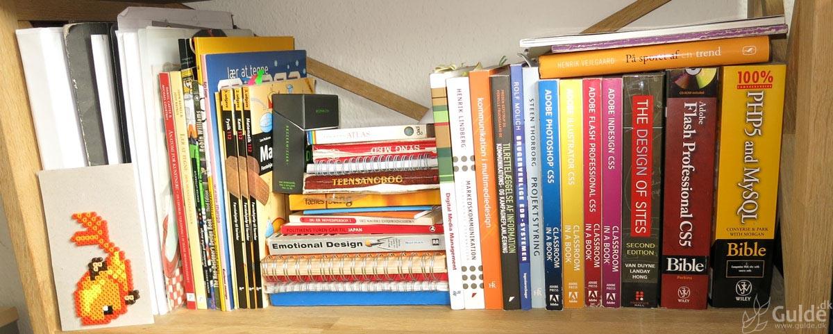 Mine bøger, anden hylde på kontoret, mest fagbøger og sådan...