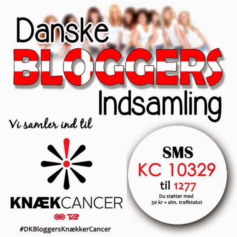 Danske bloggere har samlet 2500 kr ind til at knække canceren