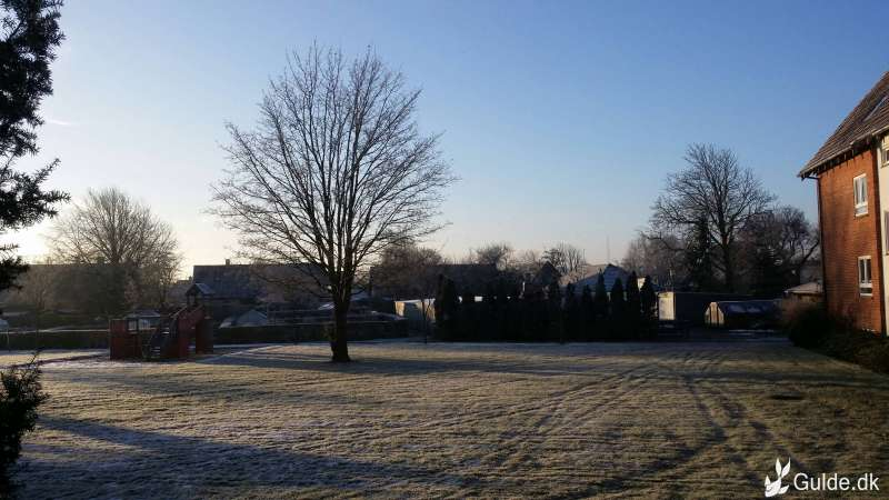 Godmorgen frost