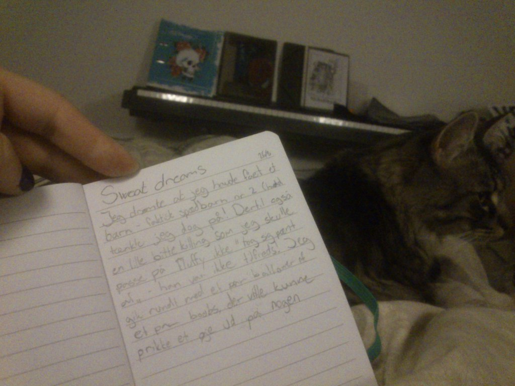 Se min smukke håndskrift - personlig blogchallenge #16